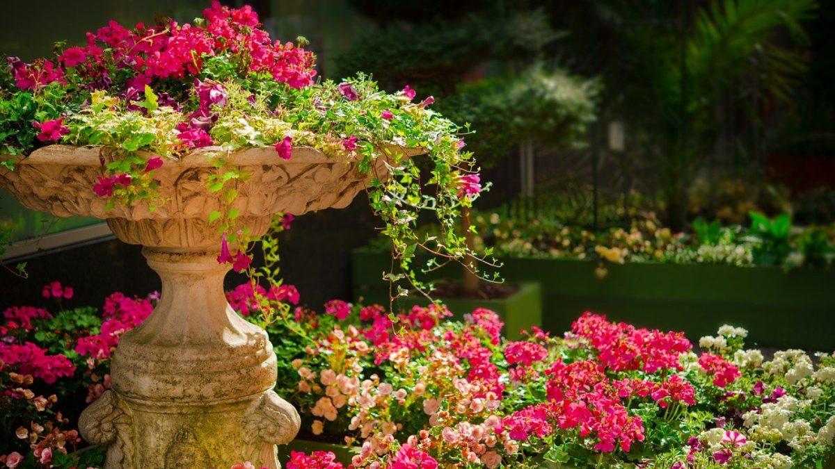 Comment entretenir son jardin ?